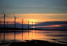 Elektrarna vetrno polje
