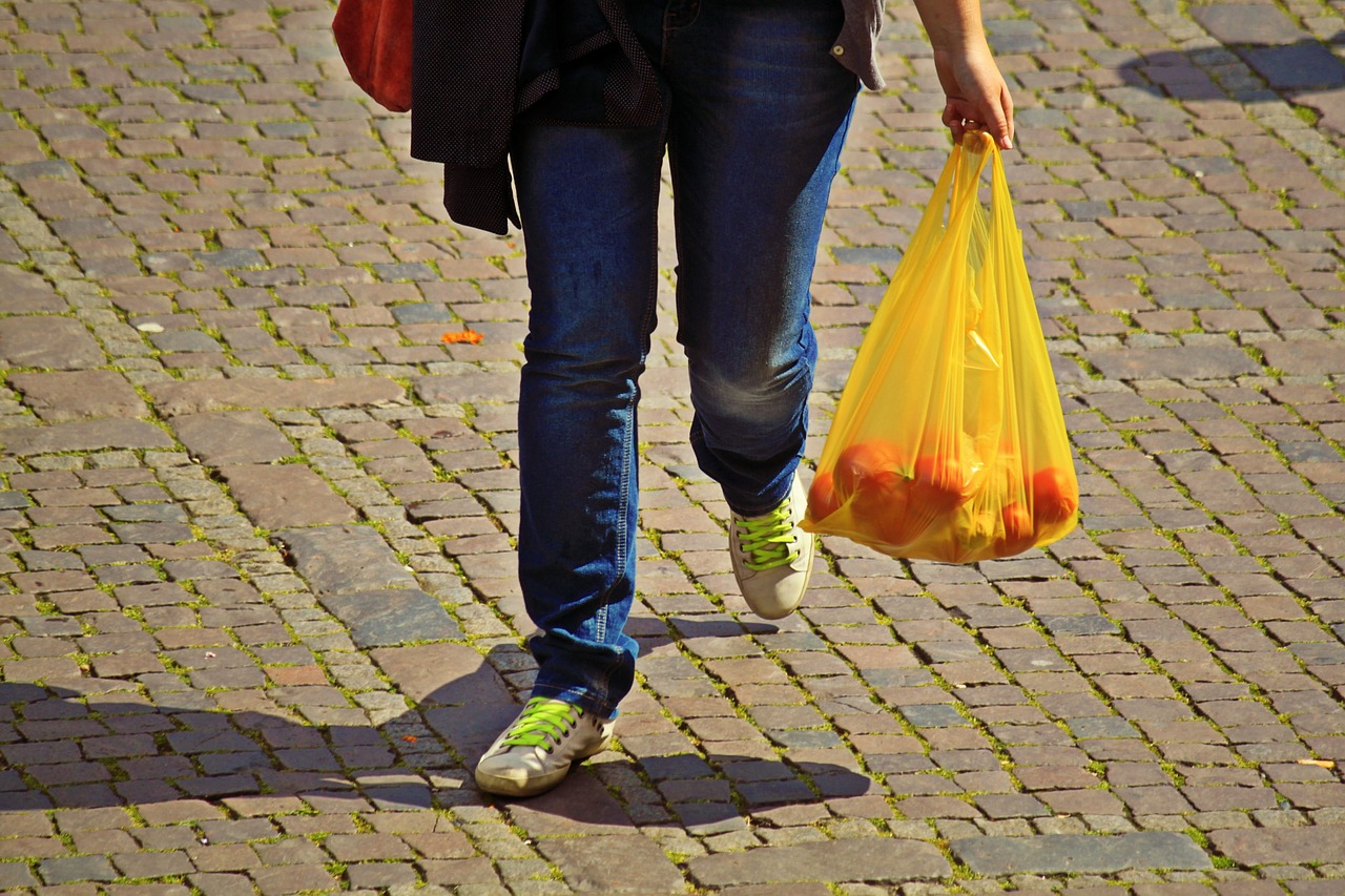 Plastične vrečke