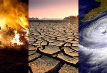 Dvig svetovne temperature vpliva na vse nas