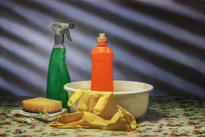 čiščenje in čistila