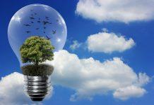 žarnica z drevesom