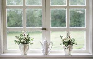 dve cvetlici na okenski polici