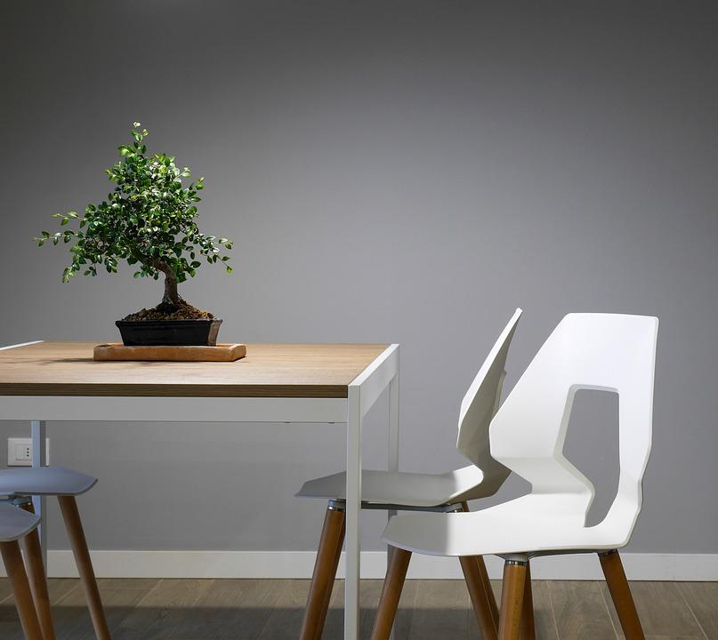 Siva stena z minimalističnim pohištvom