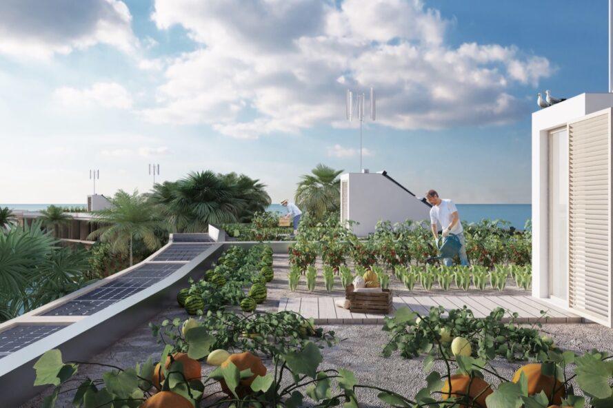 Uporaba strehe pri ideji francoske arhitektke