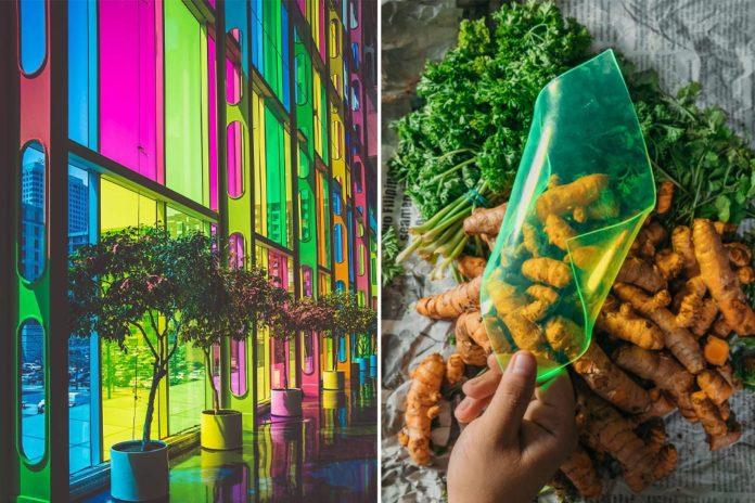 Iz odpadne zelenjave in sadja v solarni panel