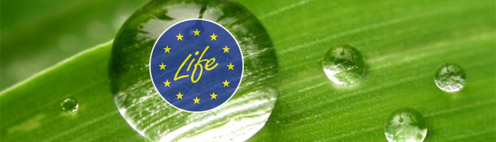 Evropski program za zeleno Evropo