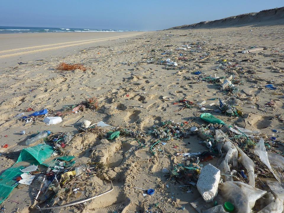 Peščena plaža, polna smeti