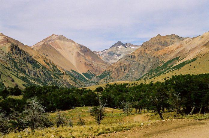 Gozdna pokrajina, travnik, v ozadju gore