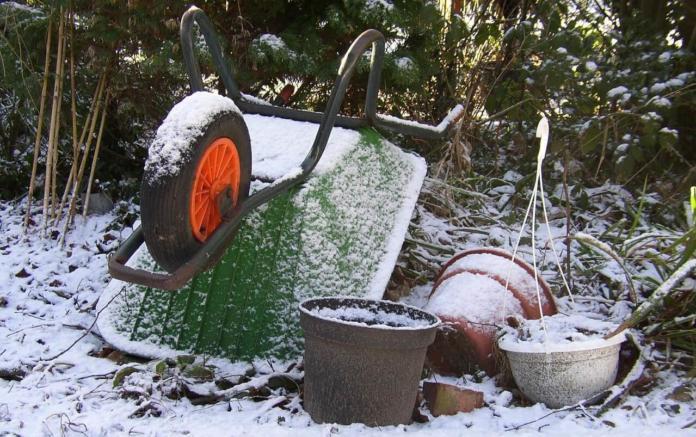 Zimsko vrtnarjenje