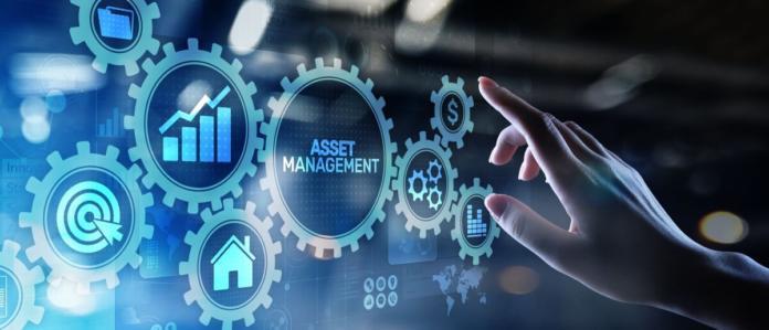 Celovito obvladovanje investicij in vzdrževanja (Asset Management)