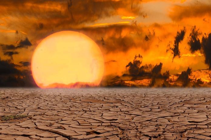 Vroče sonce nad puščavo
