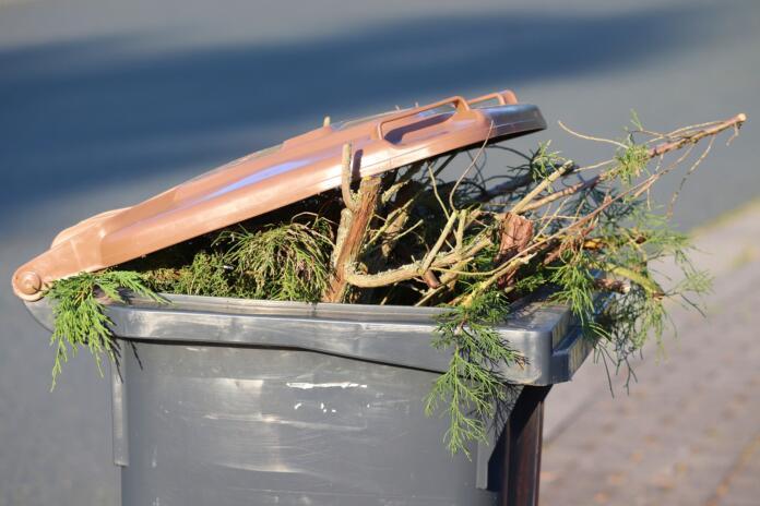 Poln zabojnik za biološke odpadke