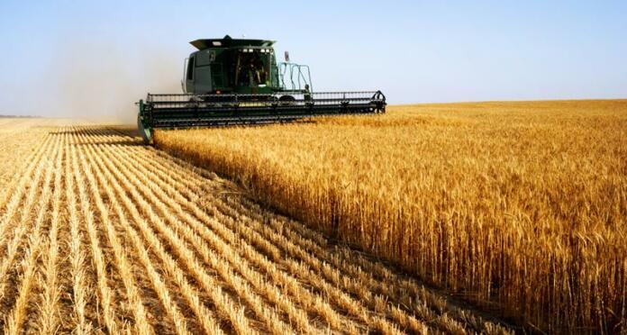 Agrikulturni padec produktivnostne rasti
