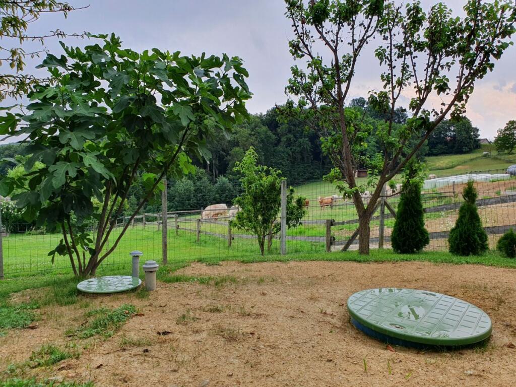 Čistilna naprava na travniku, zraven drevesa