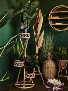 Notranje rastline in stojalo za njih iz ratana_Oliver Bonas (Vir: Countryliving)