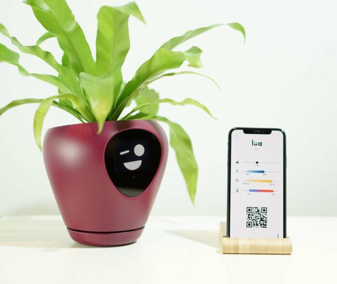 Pametna naprava Lua na mizici, ob njej pametni telefon s prikazano QR kodo