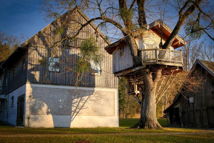 hišica na drevesu