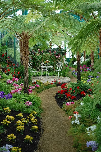 Rožni vrt