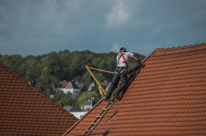 Krovec na strehi